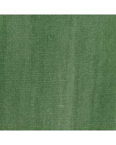 Liquitex Muted Green