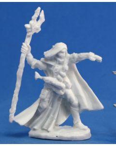 Reapermini Elquin, high elf adventurer