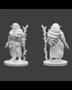 Krakenships Phoradin Male druid